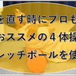 ストレッチポールを使った猫背体操のブログのイメージ画像