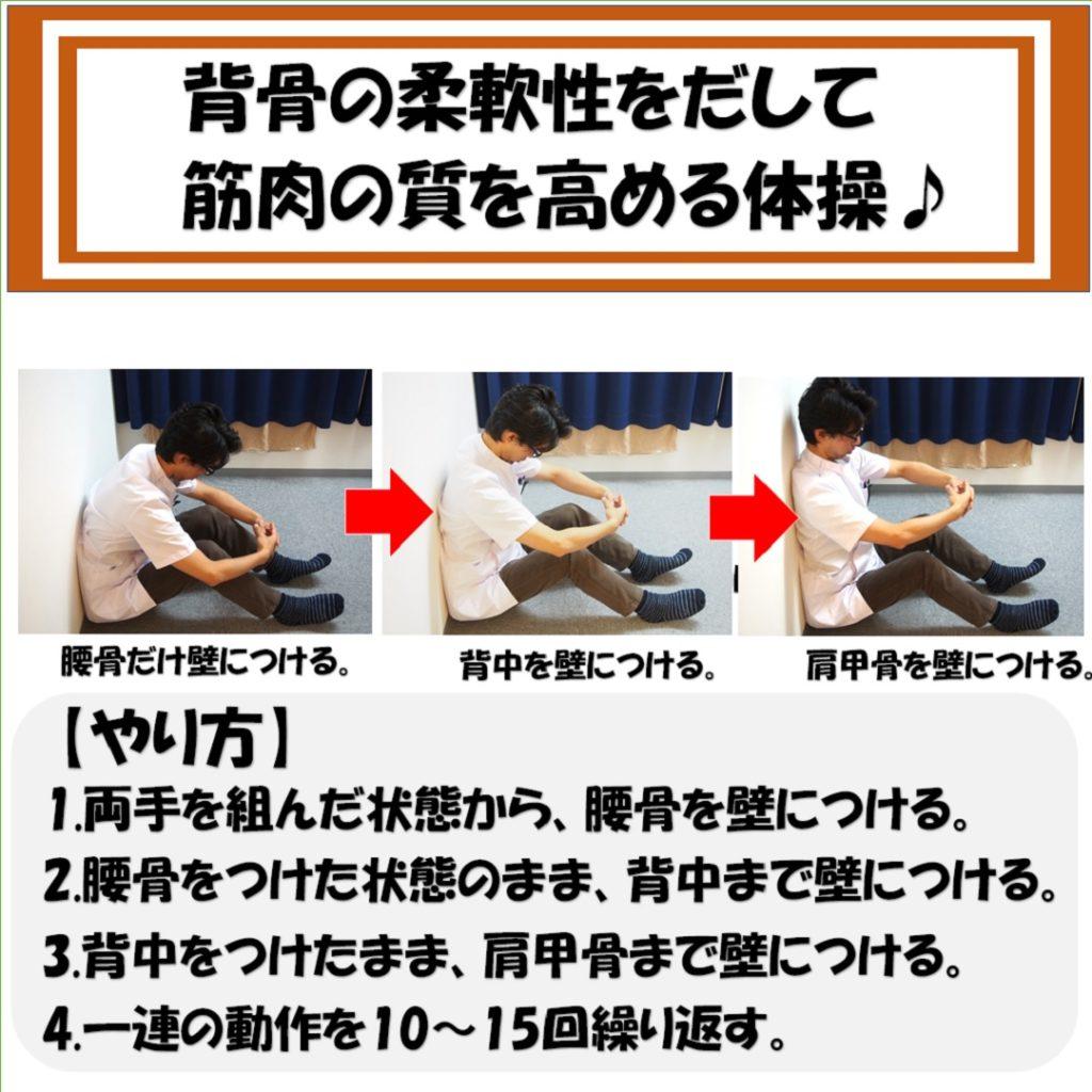 背骨の柔軟性と筋肉の質を上げる体操