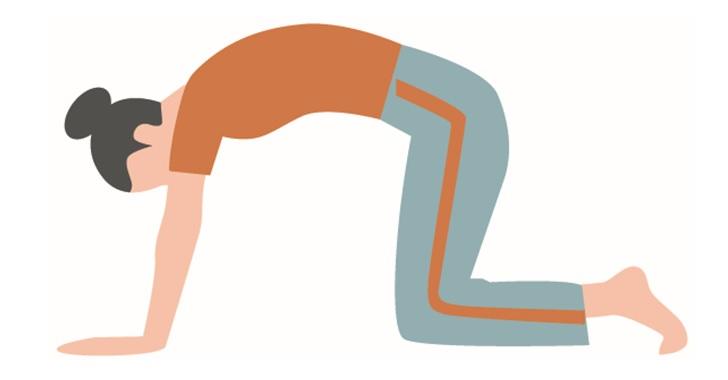 腹斜筋や腹横筋の体操のスタートポジション