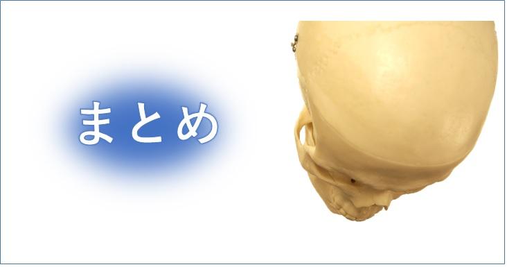 上からの頭蓋骨とまとめ