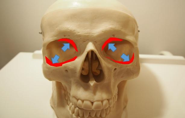 眼窩骨萎縮
