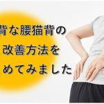 腰猫背の原因と治し方をまとめたブログのイメージ画像