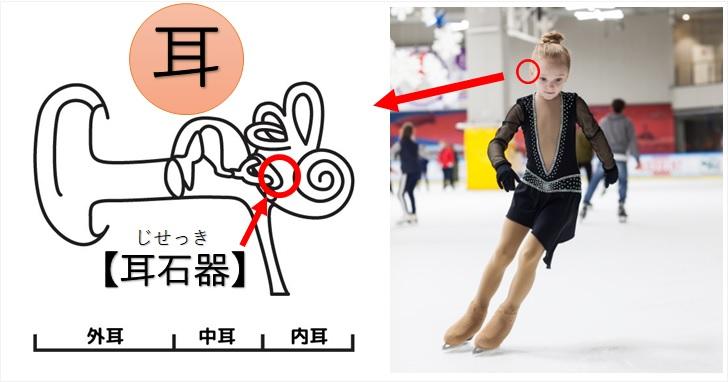 耳石器とアイススケートを行う女の子