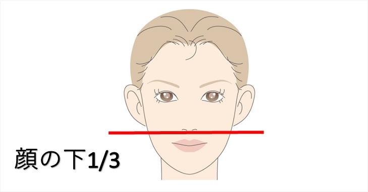 顔の下3分の1の画像