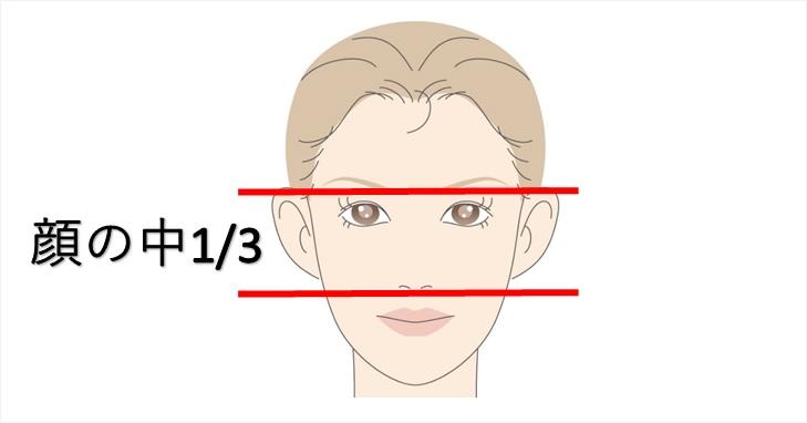 顔の中3分の1を表した画像