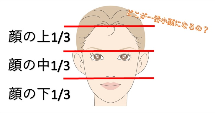 顔を3分割した画像