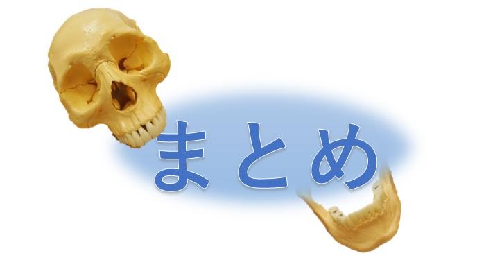 頭蓋骨とまとめ
