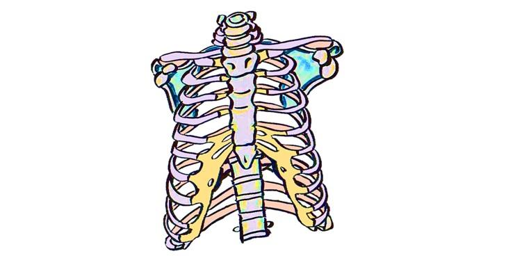 肋骨が歪んでいる絵のイメージ