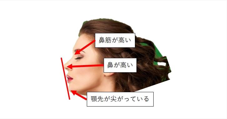 外人モデルによるEラインの説明