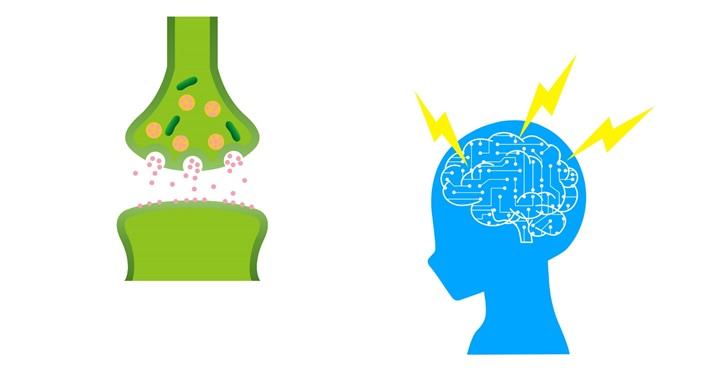 学習のシナプス電気信号のイメージ画像