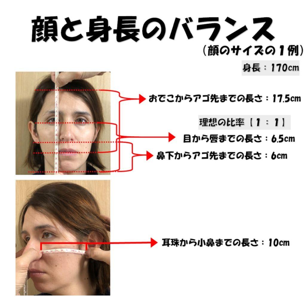 顔と身長のバランス1