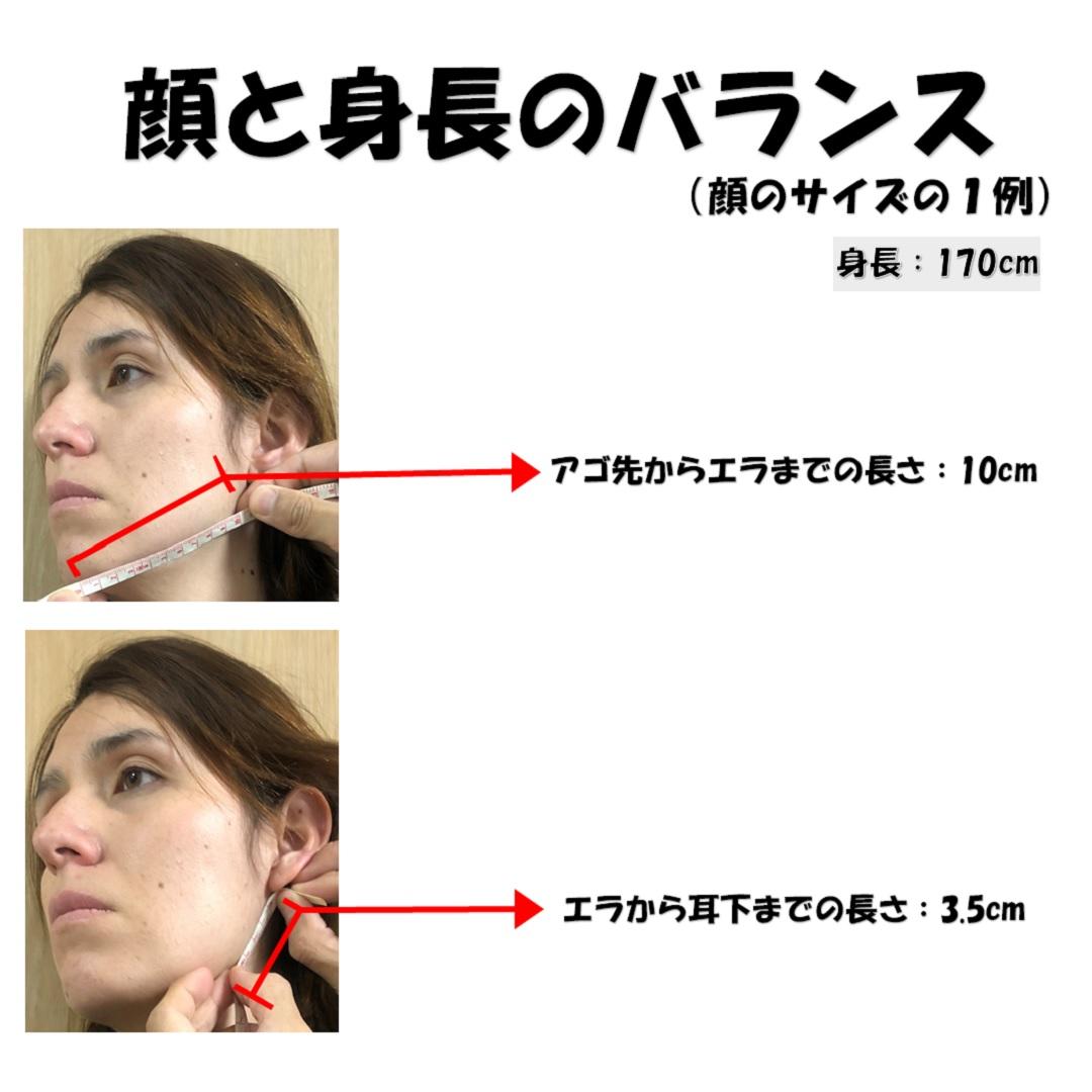 測る さ 顔 大き の