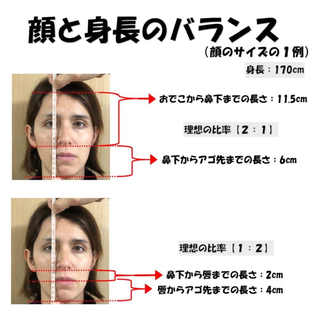 顔と身長のバランス3