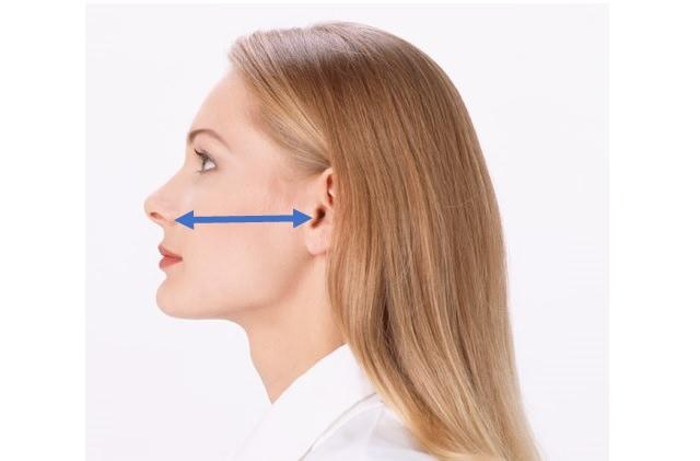 鼻から耳までの距離