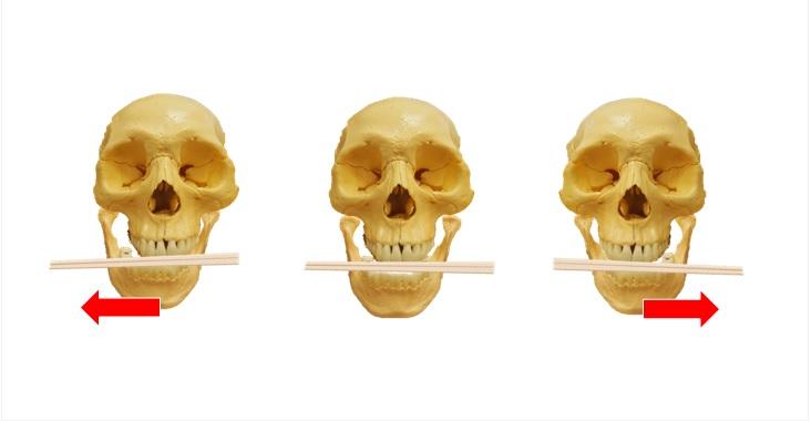 下顎左右割りばし運動