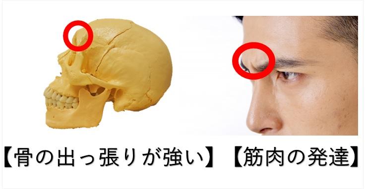 眉骨が出る原因