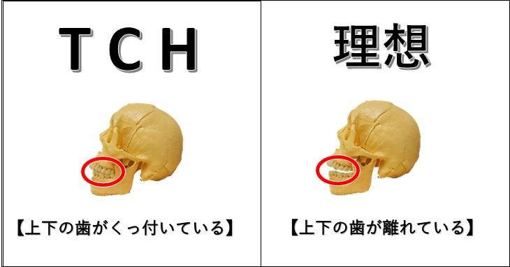 tchと理想の状態の比較