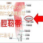 片足立ちダイエットと腸脛靭帯の関係