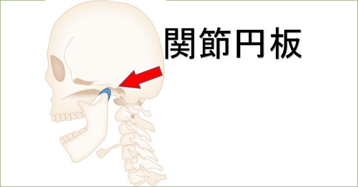 開口時関節円板