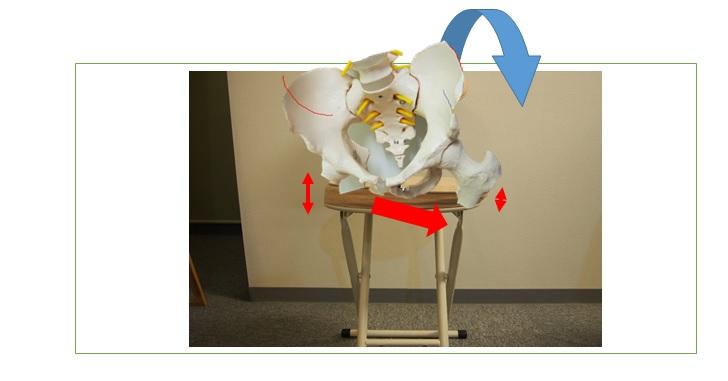骨盤の歪みと椅子