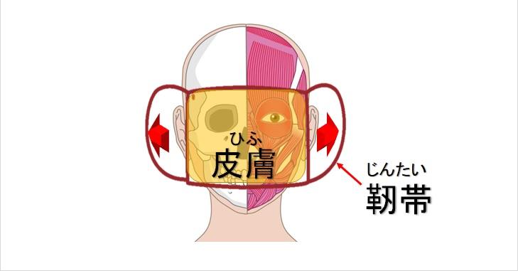 マスクでの靭帯固定イメージ