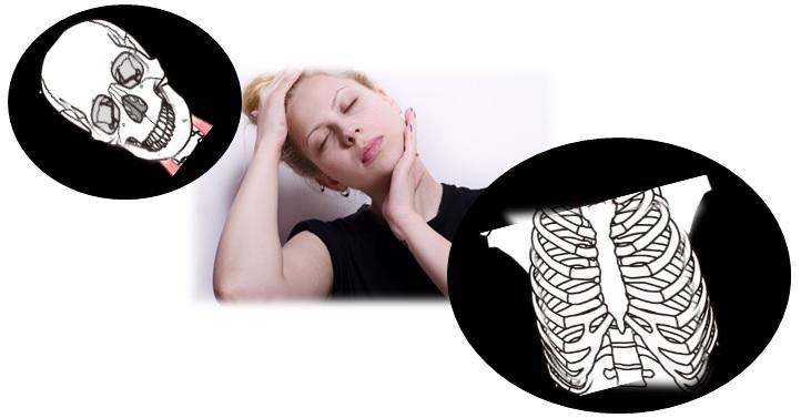 首の歪みの原因は顔か体か