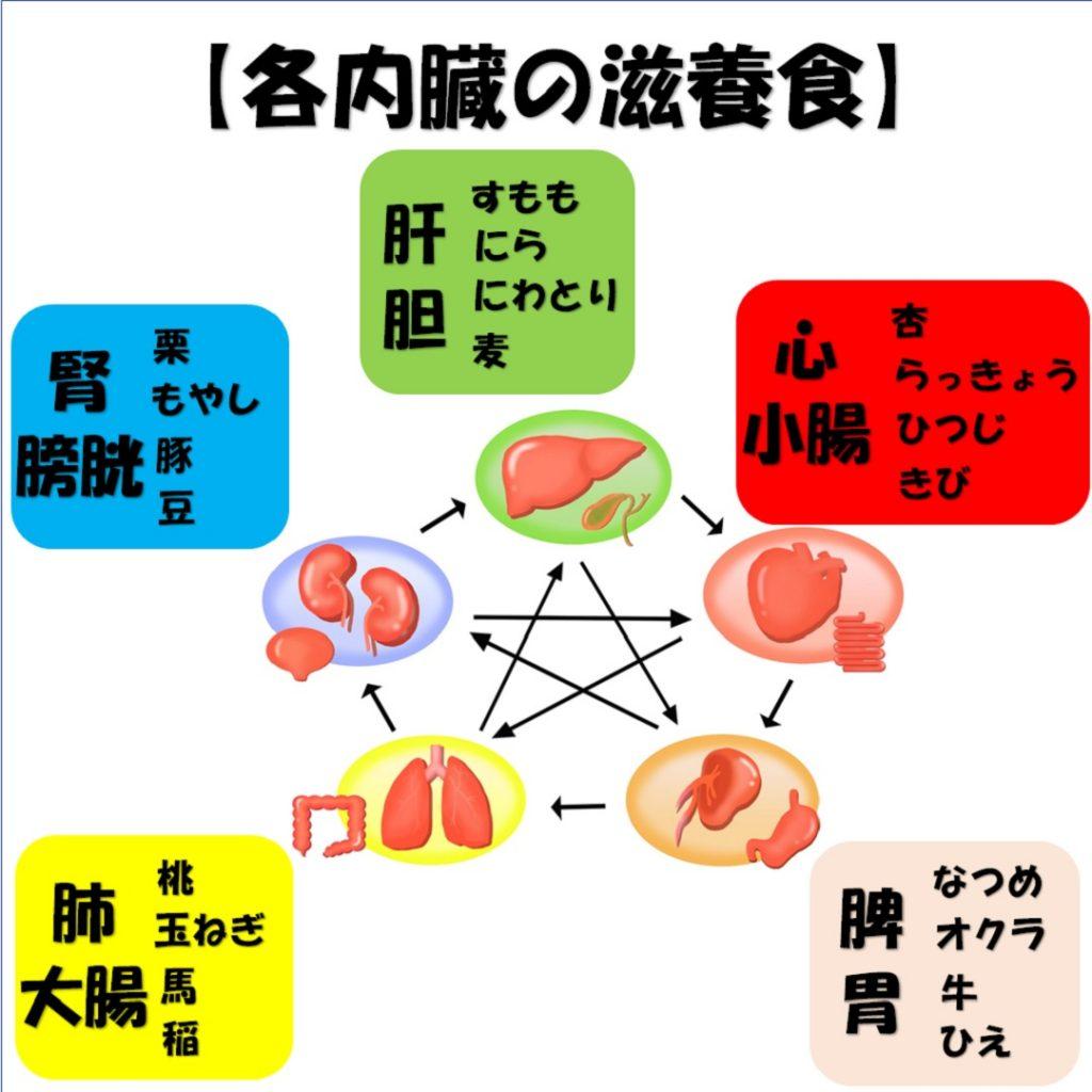 東洋医学的にみる各内臓の滋養食を説明した画像