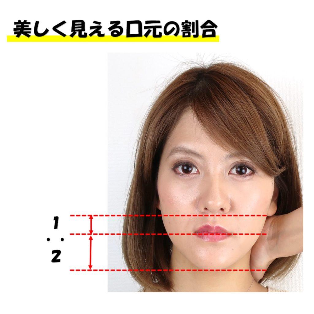 鼻から口と口から顎先のバランスと説明した画像