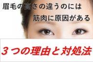 眉毛の高さが違うのには筋肉に原因がある3つの理由と対処法